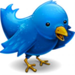 twitter20bird